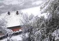 Pao sneg u Šljivici!