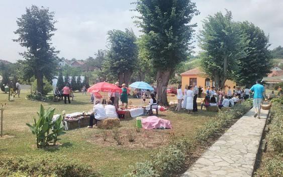 "Drugi ""Festival vina, hrane i harmonike"" u Rekovcu!"