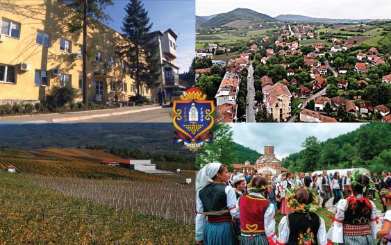 Potencijali opštine Rekovac