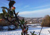 Zabeleo se Levač, pao prvi sneg