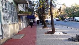 Rekonstruckija trotoara u Rekovcu